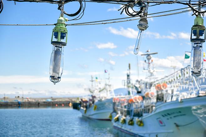 日本全国の13人の漁師を取材。