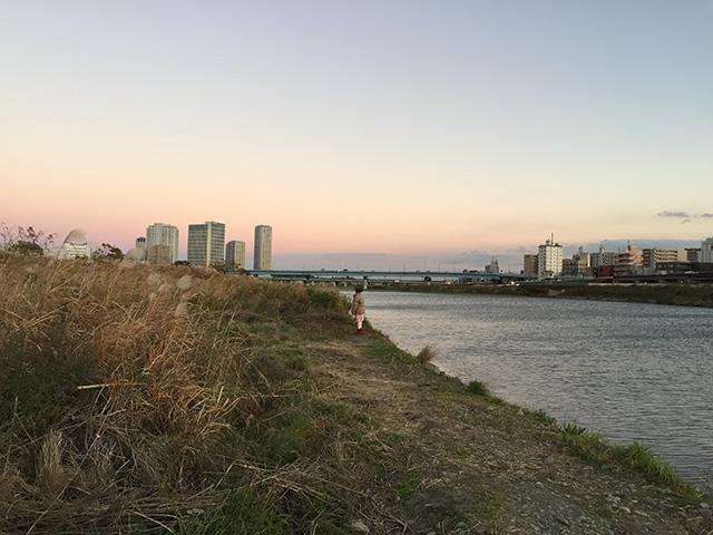 枯れすすきの原から、多摩川と対岸の二子新地がのぞめる2
