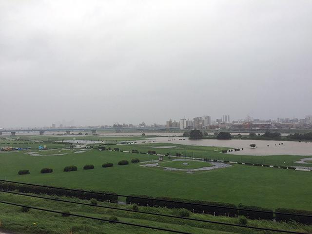 大雨が降ったときの多摩川は、河川敷に水があふれます。 河原にねぐらのあるツバメたちは、どこに避難してるんだろう?