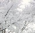 山形・上山(かみのやま)温泉の冬