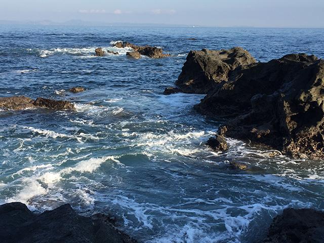 久々に海の青に染まりました。 海の向こうには 房総半島がくっきりと。