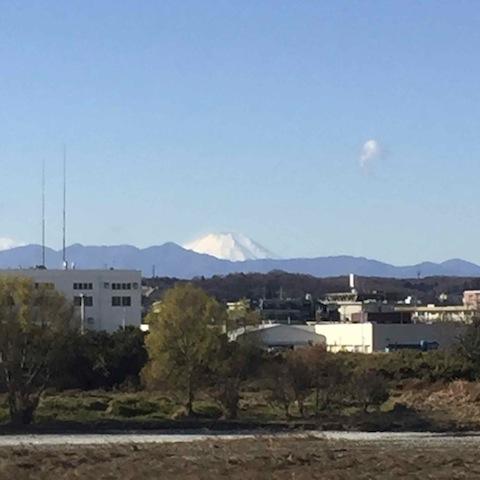 富士山みえる