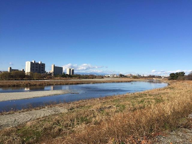 狛江の対岸