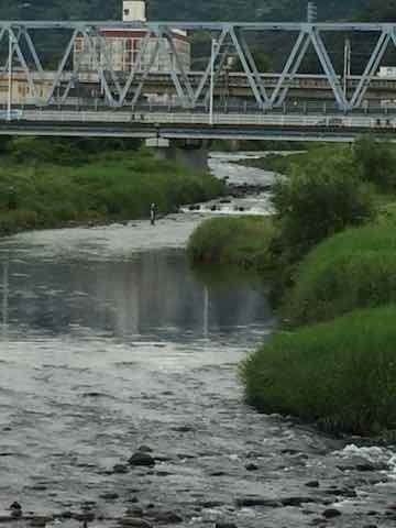 早川の鮎釣り