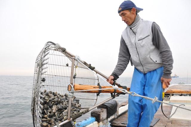 ホンビノス漁2