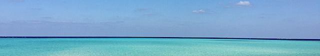 ミヤコの海