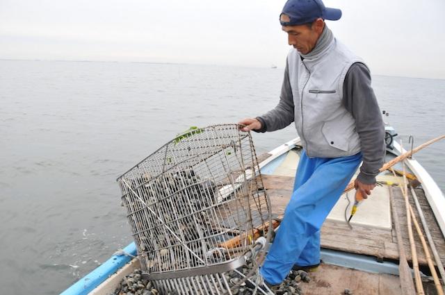 ホンビノス漁3